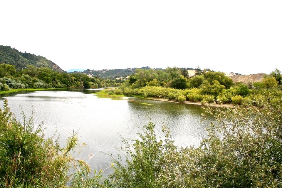 russian river, healdsburg, ca.